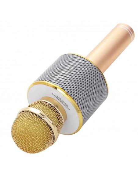Karaoke mikrofonas su daugybe funkcijų