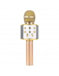 Karaoke mikrofonas suaugusiems ir vaikams su daugybe funkcijų